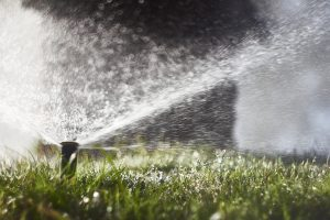 Outdoor lawn sprinkler contributes to high water bill