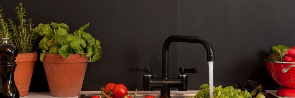 Close up of a kitchen sink and vegetables