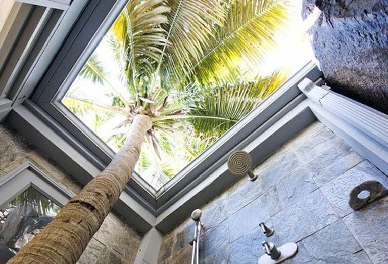 Shower beside a palm tree in Tortola