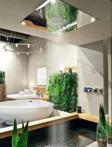 Concealed shower surrounded by plants in a home in Costa Rica