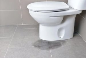 Dampness around the base of the toilet due to leaking