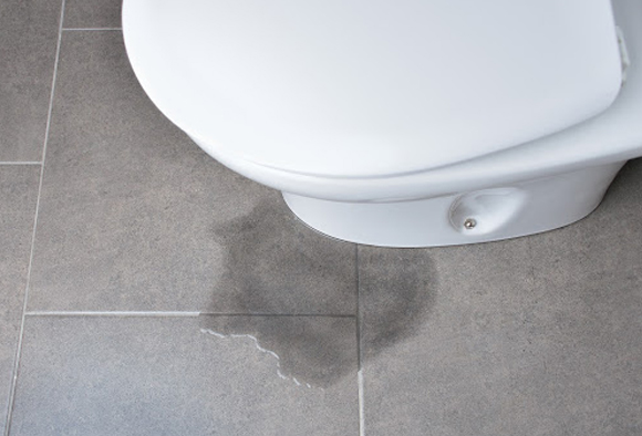 Top image of a puddle forming at the base of the toilet due to leakage