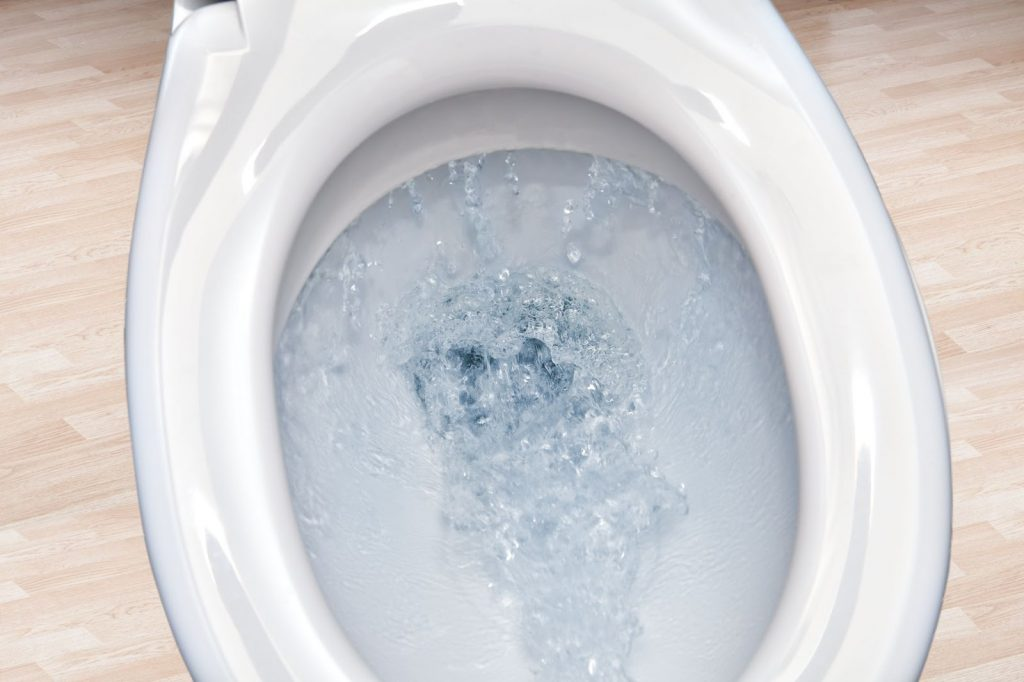 Closeup of a brand new toilet in a home for sale